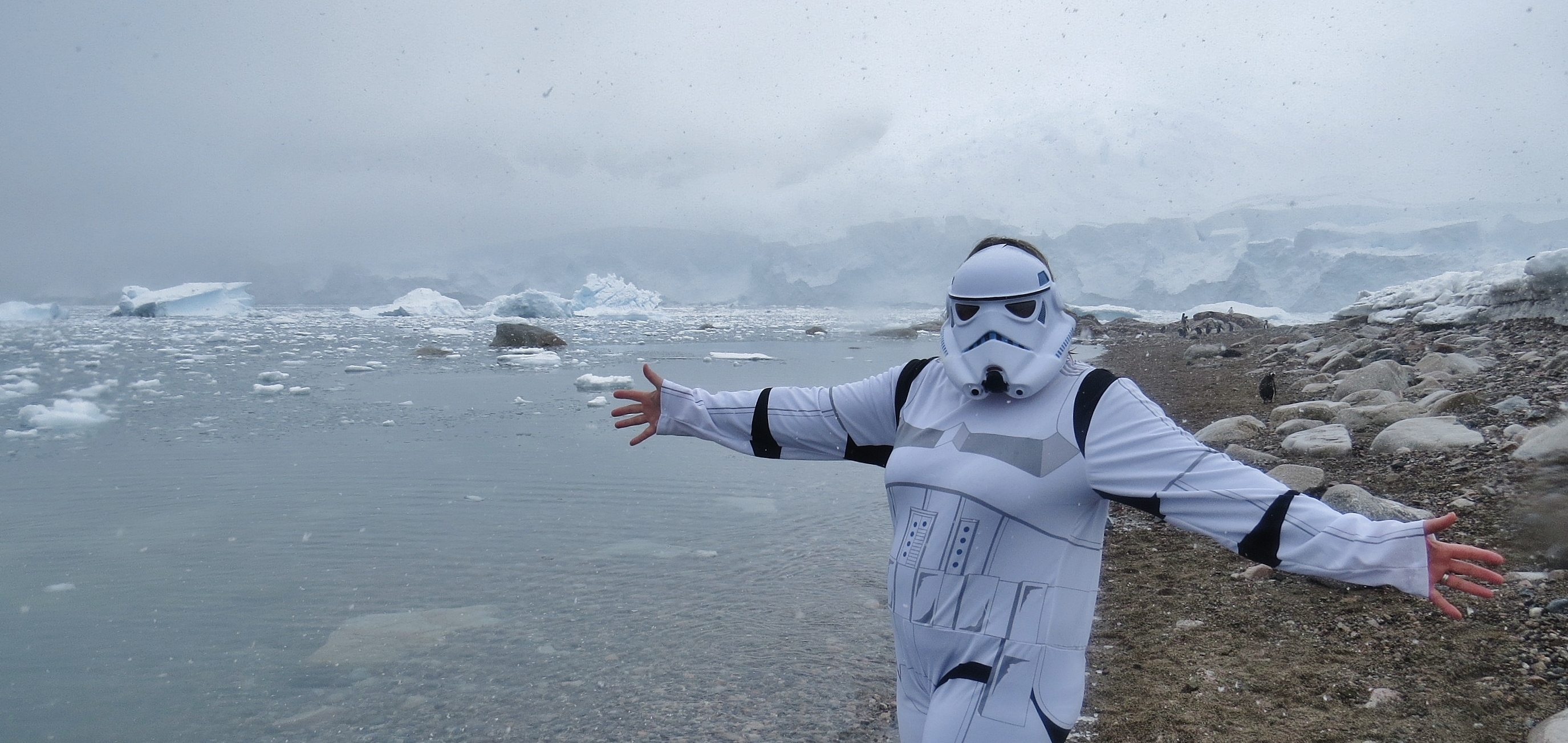 The storm trooper of Antarctica